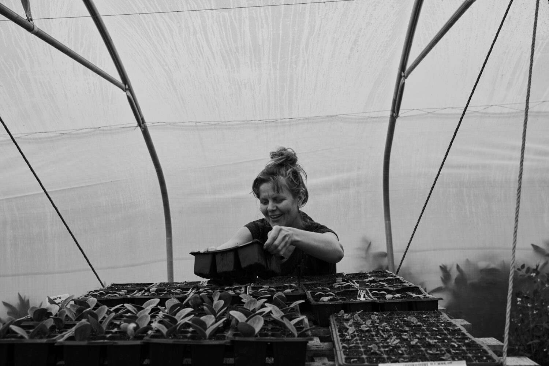 - Wilson's Market Garden - Emli Bendixen